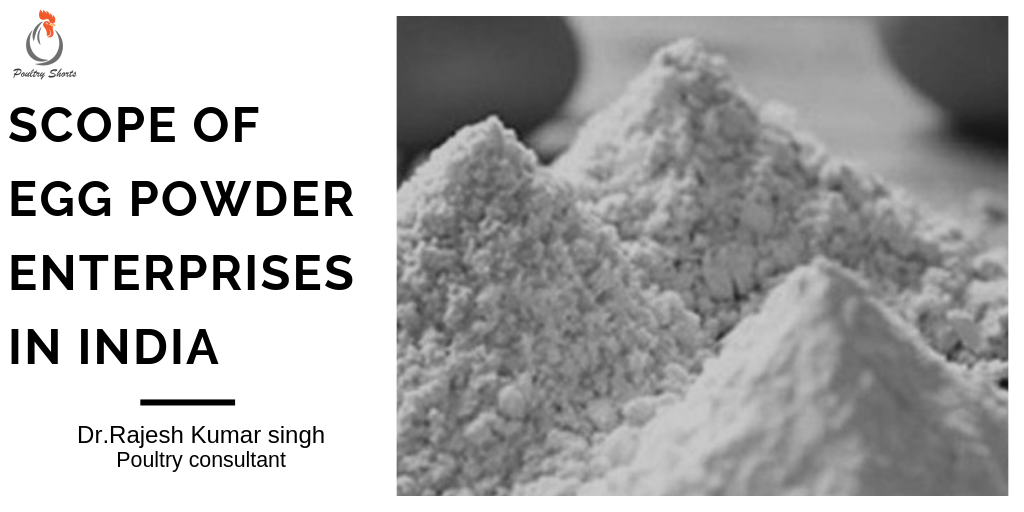 SCOPE OF EGG POWDER ENTREPRISES IN INDIA - Poultry Shorts